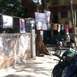 Photo exhibition with pictures showcasing how citizens engage with public spaces displayed by BNY during Malleshwaram Cycle Day